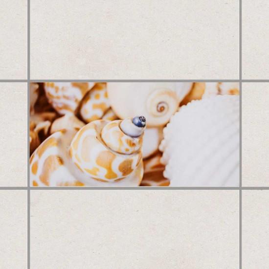 Кадифени мидички - стикери за плочки