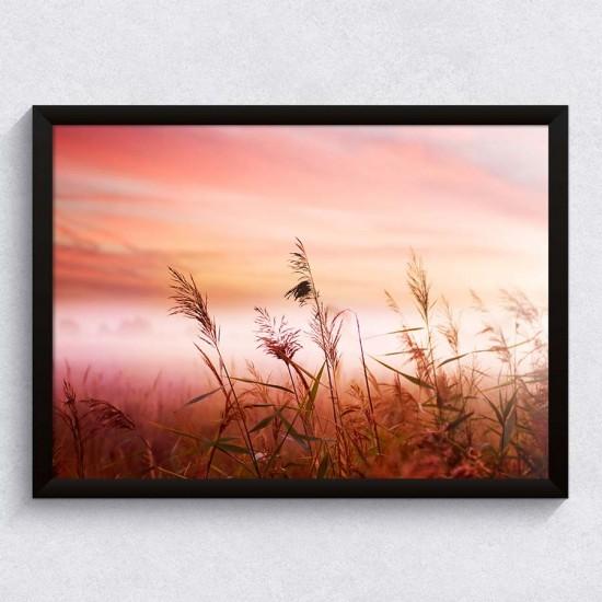Ранно поле - Фото пано