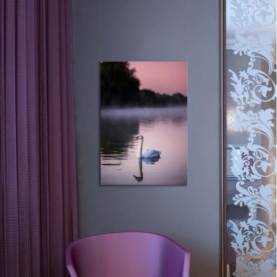 Залез с лебед - Фото картина пейзаж