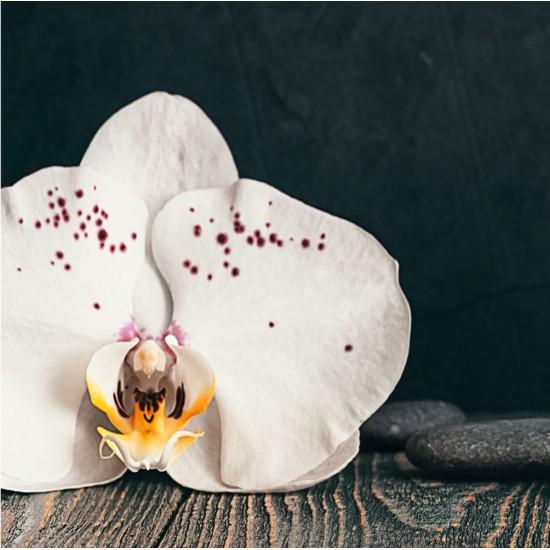 Релакс Орхидея - Стикер за гръб на кухня
