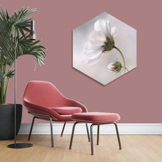 Космос цвете - Хексагон пано за декорация на стена