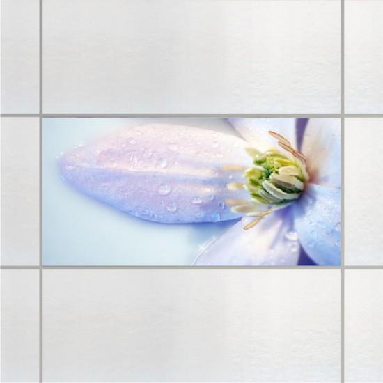 Росни цветя - стикери за плочки и стени