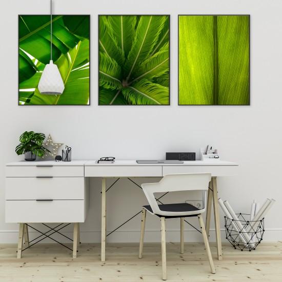 пана картина палмови листа