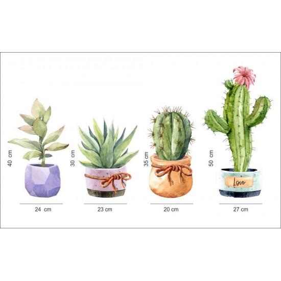 кактус в саксия за декорация на стена