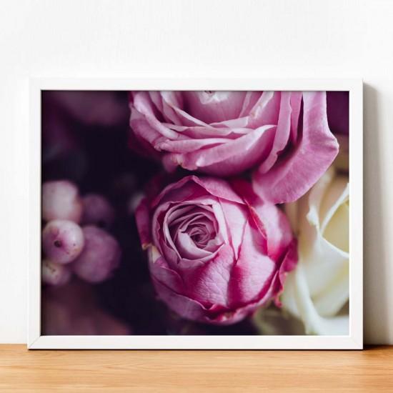 Макро Елегантни рози - Фото пано - Фото картина, фото арт
