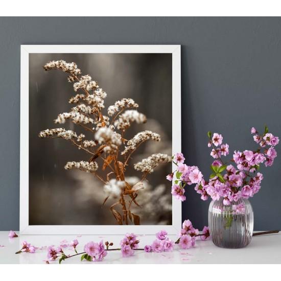Трева Пампас - Фото пано, Принт в рамка