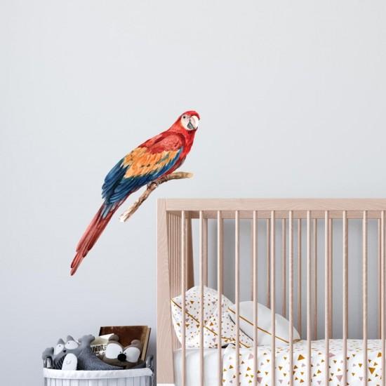 стикер за стена папагал