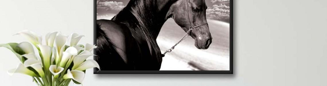 Картини с коне