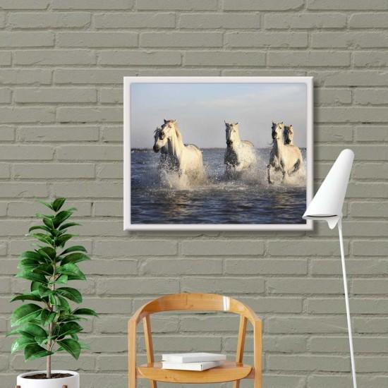 Коне и море 2 - Фото пано, Картина с коне - Принт в рамка