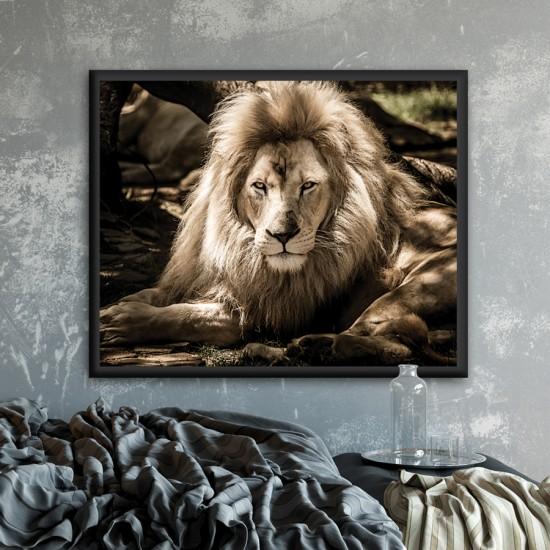 картина лъв Картина - Принт в рамка