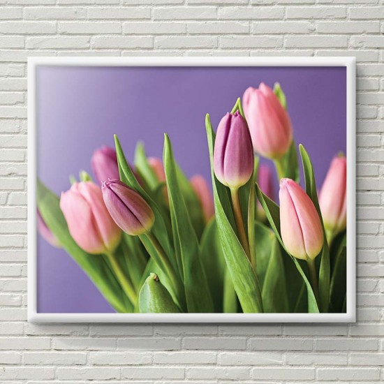 Лалета на лилав фон  - Фото пано, Картина, рамка, канава