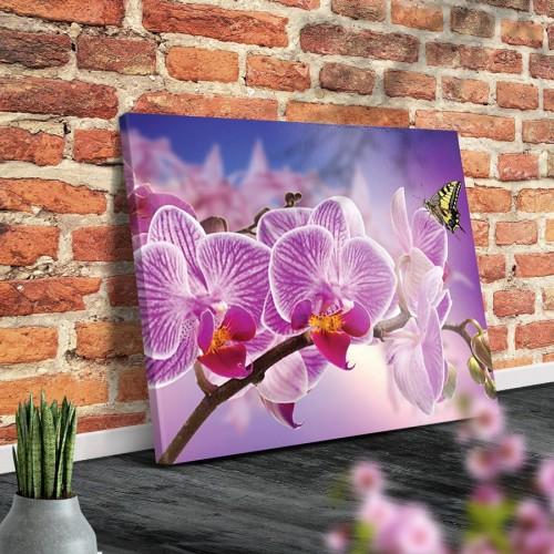 Картини и пана за декорация на стена