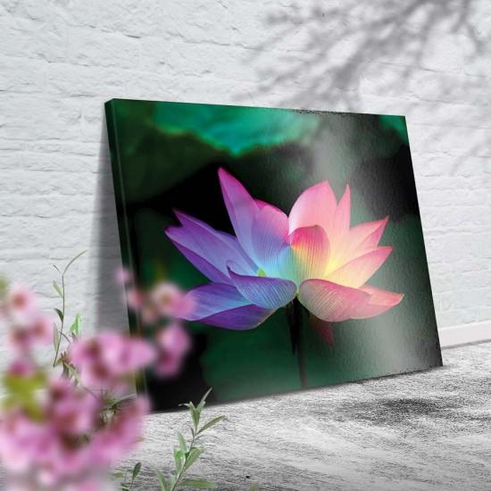 Лотос от преливаща светлина - Картина - Принт в рамка