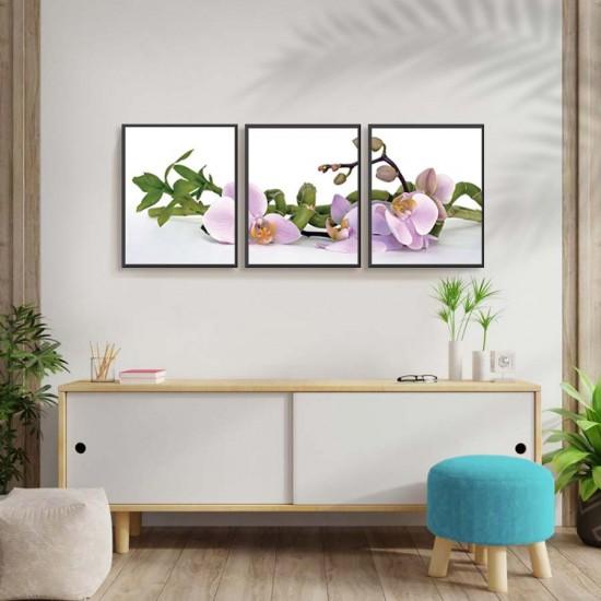 Клонки орхидея - картина 3 части