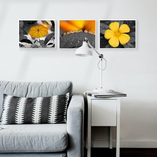 лот три картини за стена
