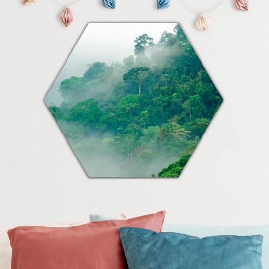Мъглевина  - Хексагон, Хексагон пано за декорация на стена