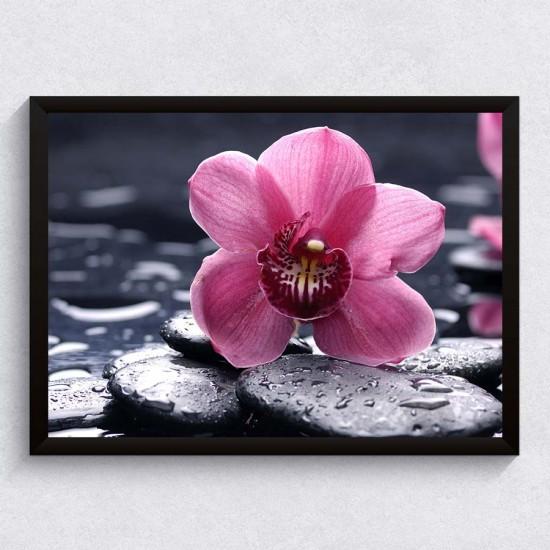 Орхидея Relax - Фото пано - картина за баня, йога център