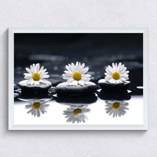 Маргаритки Relax - Фото пано - картина за баня, йога център