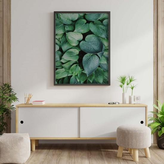 картина красиви големи листа на растение