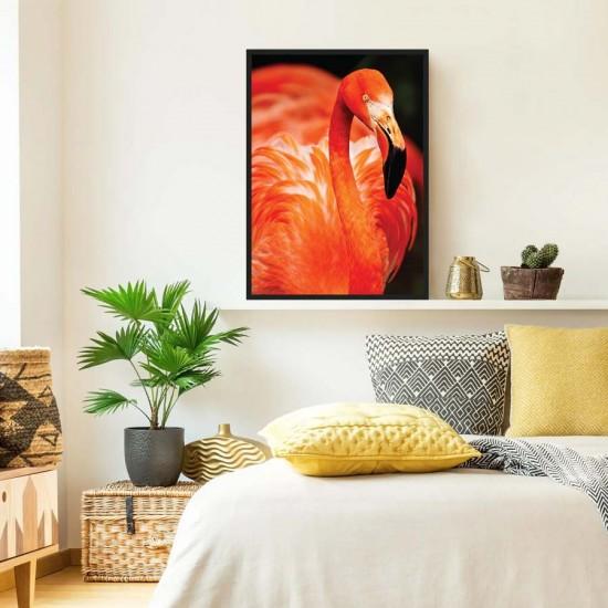 Фламинго  - фото принт арт с птици