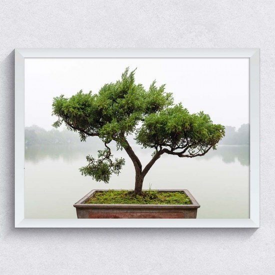 Бонсай на езеро - Картина Фото пано
